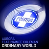 Cover of the album Ordinary World (Remixes) - EP
