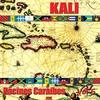 Couverture de l'album Racines Caraibes, Volume 5