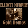 Couverture de l'album Gold Demos (Vintage Series Vol 10)