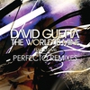 Cover of the album The World Is Mine (Perfecto Remixes) - EP