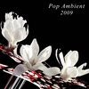 Cover of the album Pop Ambient 2009