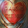 Couverture de l'album Diamond in the Mud - Single