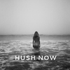 Cover of the album Hush Now