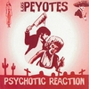 Cover of the album Psychotic Reaction