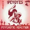 Couverture de l'album Psychotic Reaction