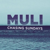 Couverture de l'album Muli - Single