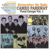 Cover of the album Remember Me Baby - Cameo Parkway Vocal Groups, Vol. 1