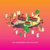 Couverture de l'album Family Fires - Single