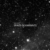 Couverture de l'album Space of Variants