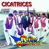 Cover of the album Cicatrices
