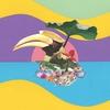 Cover of the album Flowering Jungle