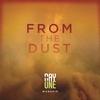 Couverture de l'album From the Dust (Live)