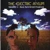 Couverture de l'album The Electric Asylum - Volume 4