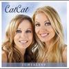 Cover of the album 20 vuotta: Juhlalevy