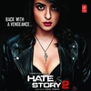 Cover of the album Hate Story 2 (Original Motion Picture Soundtrack)