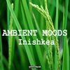 Cover of the album Ambient Moods