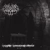 Couverture de l'album Cryptic Communications