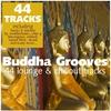 Couverture de l'album Buddha Grooves - 44 Lounge & Chillout Tracks