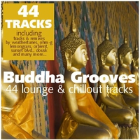 Cover of the track Buddha Grooves - 44 Lounge & Chillout Tracks