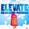 Couverture de l'album Elevate - Single