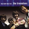 Cover of the album The Very Best of the Tremeloes
