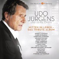 Cover of the track Mitten im Leben - Das Tribute Album