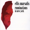 Cover of the album Ruminations in New York