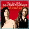 Couverture de l'album Dreaming in Sanskrit