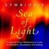 Couverture de l'album Sea of Light