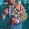 Couverture de l'album Viva Africando