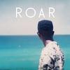 Couverture de l'album Roar - EP