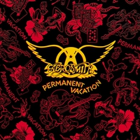 Cover of the track Permanent Vacation