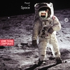 Couverture de l'album Played in Space: The Best of Something Corporate