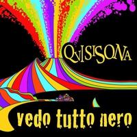 Cover of the track Vedo tutto nero - Single