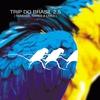 Cover of the album Trip Do Brasil 2.5 - Remixes, Rares & Lives