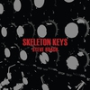Cover of the album Skeleton Keys