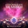 Couverture de l'album The Mirror