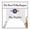 Couverture de l'album The Best of Big Bopper
