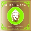 Couverture de l'album Siddharta, Spirit of Buddha-Bar, Vol. 6