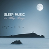 Couverture de l'album Sleep Music - 101 Sleep Songs
