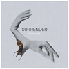 Cover of the album Surrender - Single
