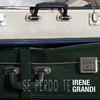Cover of the track Se perdo te