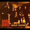 Cover of the track Wild World (usa 1993)