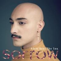 Couverture du titre Sorrow - Single