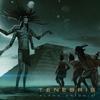 Couverture de l'album Alpha Orionis