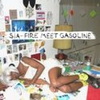 Couverture du titre Fire Meet Gasoline