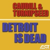 Couverture de l'album Detroit is Dead