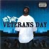 Couverture de l'album Veterans Day