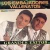 Couverture de l'album Grandes Exitos de los Embajadores Vallenatos