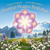 Cover of the track Mountain Meadow Meditation